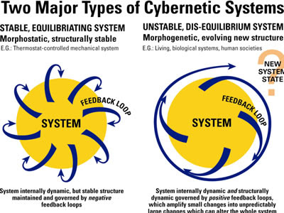 Neoclassical theory treats capitalism and markiets as morphophostatic systems (self-generating/stabilizing/sequilibrating/renewing/reproducing/expanding) whereas human history and the present shows them as morphogenetic systems subject to both + and - feeback loops and thus dynamic instability