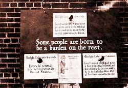 eugenics cover-1588b