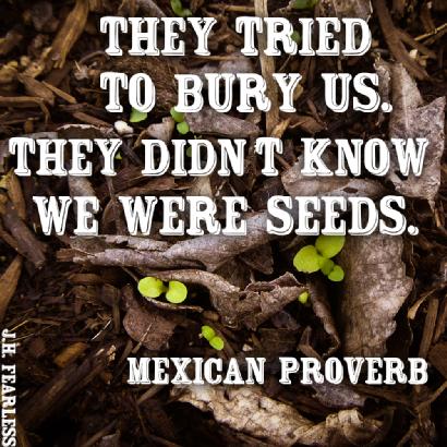 mexican proverb 72bdb198-68f0-4186-bc13-5c92d95dd37c-medium